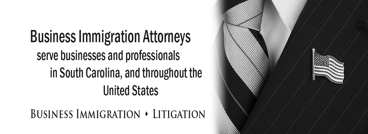 black and white banner image for immigration litigation practice